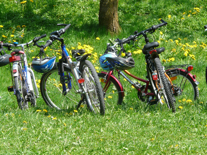 Bike hire Forest of Dean