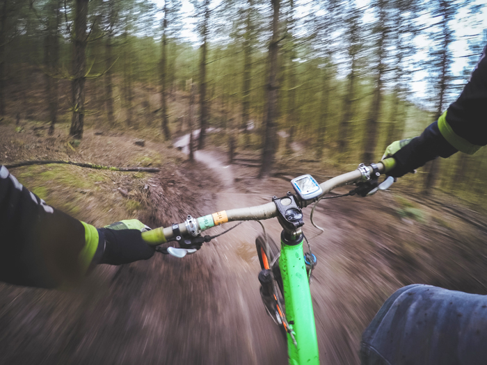 Downhill off-road cycling in the Forest of Dean
